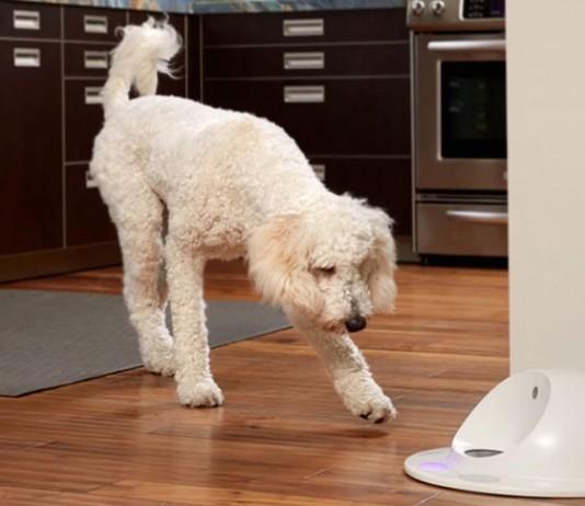 Cleverpet gamelle connectée intelligente ludique pour les chiens
